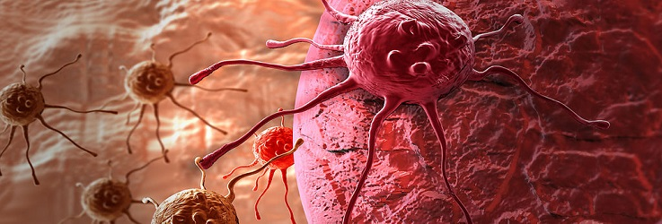 Cancer Cells Cancer Fighting Juices